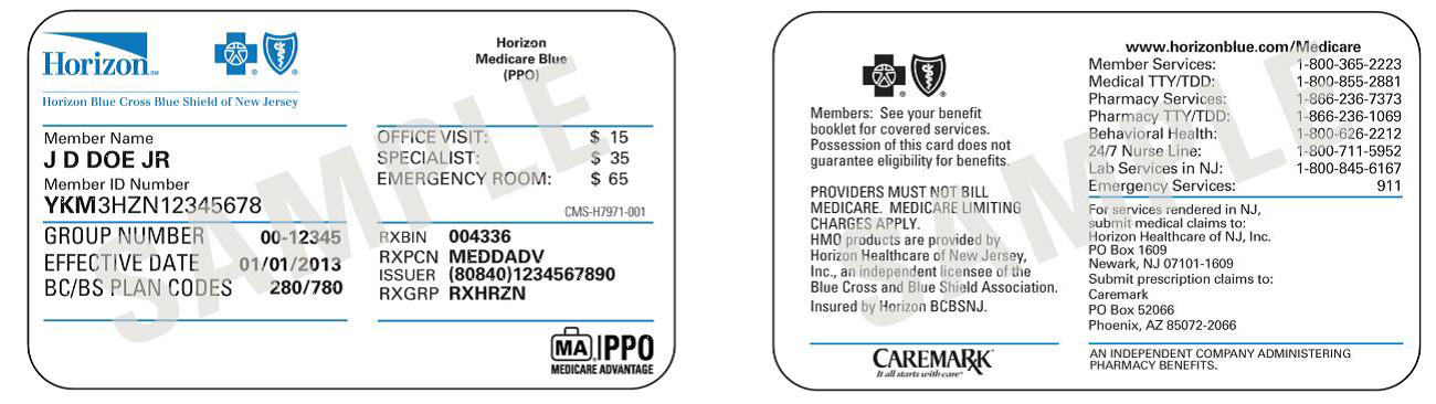 Horizon Medicare Blue (PPO) - Horizon Blue Cross Blue Shield of New